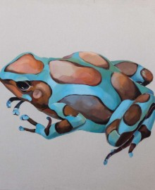 FROG_COLORS